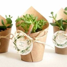 regalo boda ecofriendly